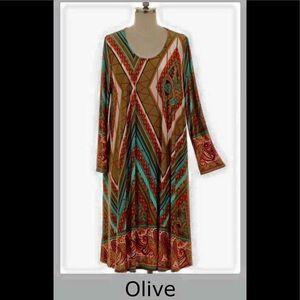Dresses & Skirts - 🆕 Olive multi-colored, paisley border print dress